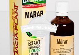 TINCTURA MARAR 50ml DACIA PLANT Tratament naturist amenoree anorexie alaptare boli ale cailor urinare