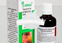 TINCTURA ECHINACEEA 50ml HOFIGAL Tratament naturist infectii acute si cronice imunodeficienta angina laringita