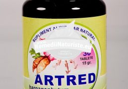 ARTRED(HARPAGOPHITUM) 30cps HERBAVIT Tratament naturist antireumatic antiinflamator analgezic artroza