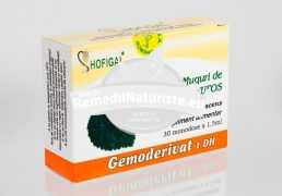 MUGURI MESTEACAN PUFOS 30 monodz HOFIGAL Tratament naturist rinofaringite astenie psiho-fizica epuizare tulburari dismetabolice