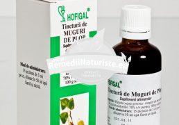 TINCTURA MUGURI PLOP 50ml HOFIGAL Tratament naturist tuse bronsita afectiuni renale acnee