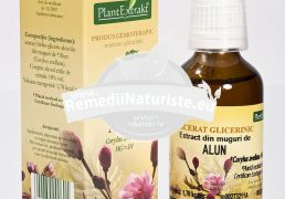 CORYLUS AVELLANA (ALUN) 50ml PLANTMED Tratament naturist ciroza hepatica emfizem astm bronsite cronice