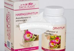 HARPAGOPHYTUM 60cpr DACIA PLANT Tratament naturist antireumatic antiinflamator depurativ artrita