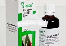 TINCTURA ARDEI IUTE 50ml HOFIGAL Tratament naturist reumatism nevralgii degeraturi dezalcolizare