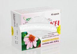 ECHINACEEA 40cps HOFIGAL Tratament naturist imunostimulator infectii bacteriene virale gripa