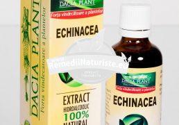 TINCTURA ECHINACEEA 50ml DACIA PLANT Tratament naturist guturai faringita laringita laringita