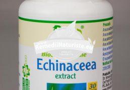 EXTRACT ECHINACEA 30cps ROTTA NATURA Tratament naturist stres hepatita raceli infectii