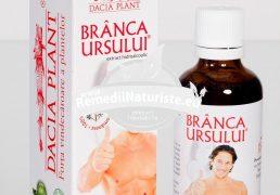 TINCTURA BRANCA URSULUI 50ml DACIA PLANT Tratament naturist imbatrinire prematura impotenta impotenta hormonala si vasculara sterilitate masculina