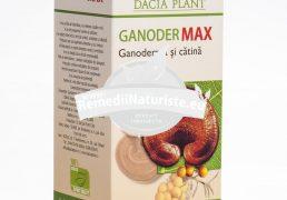 GANODER MAX 60cpr DACIA PLANT Tratament naturist mareste longevitatea antiinflamator antitusiv imunitate scazuta