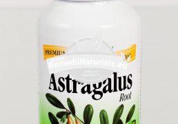 ASTRAGALUS ROOT 100cps SECOM Tratament naturist adaptogen protector pulmonar digestiv imunostimulator