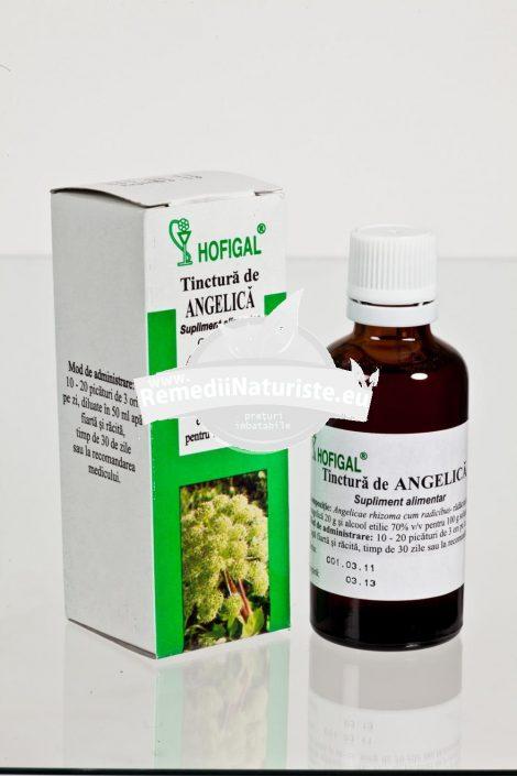 TINCTURA ANGELICA 50ml HOFIGAL Tratament naturist indigestie anorexie gastrite hipoacide guturai