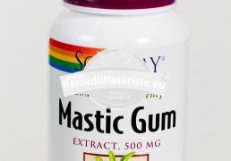 MASTIC GUM 45cps SECOM Tratament naturist reduce manifestarile cauzate de afectiuni gastrointestinale inhiba helicobacter pylori infectii cu helycobacter pylori ulceratii