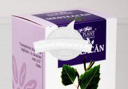 CEAI MESTEACAN 50g DACIA PLANT Tratament naturist litiaza renala si urinara pielita pielonefrita cistita