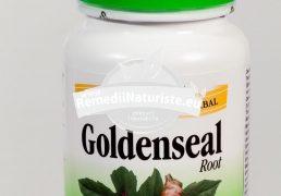 GOLDENSEAL ROTT 50cps SECOM Tratament naturist antiinfectios antiviral oboseala cronica mononucleoza