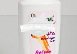 BALSAM PAR Q10 200ml HOFIGAL Tratament naturist regenerant confera parului rezistenta si stralucire pentru par degradat par vopsit