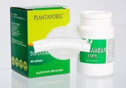 TOPINAMBUR FORTE 40tb PLANTAVOREL Tratament naturist reglarea metabolismului regleaza nivelul colesterolului regleaza nivelul glucozei digestie