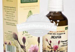 PINUS MONTANA (JNEAPAN) 50ml PLANTMED Tratament naturist reumatism cronic artroza vertebrala coxartroza coxartroza
