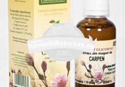 CARPINUS BETULUS (CARPEN) 50ml PLANTMED Tratament naturist sinuzite cronice traeite calmarea spasmelor rinofaringita spasmodica si cronica