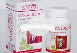 BRANCA URSULUI 60cps DACIA PLANT Tratament naturist in hipertensiune insuficienta renala reumatism frigiditate