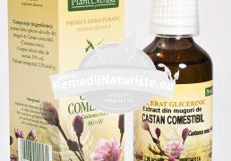 CASTANEA VESCA (CASTAN COMESTIBIL) 50ml PLANTMED Tratament naturist tulburari trofice cutanate edeme varice edem