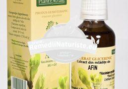 VACCINIUM MYRTILLUS (AFIN) 50ml PLANTMED Tratament naturist astm asocieri in bronhspasm tulburari vizuale miopie