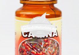 CATINA 60cps HYPERICUM Tratament naturist vitaminizant previne aparitia cancerului urticarie dermatoza
